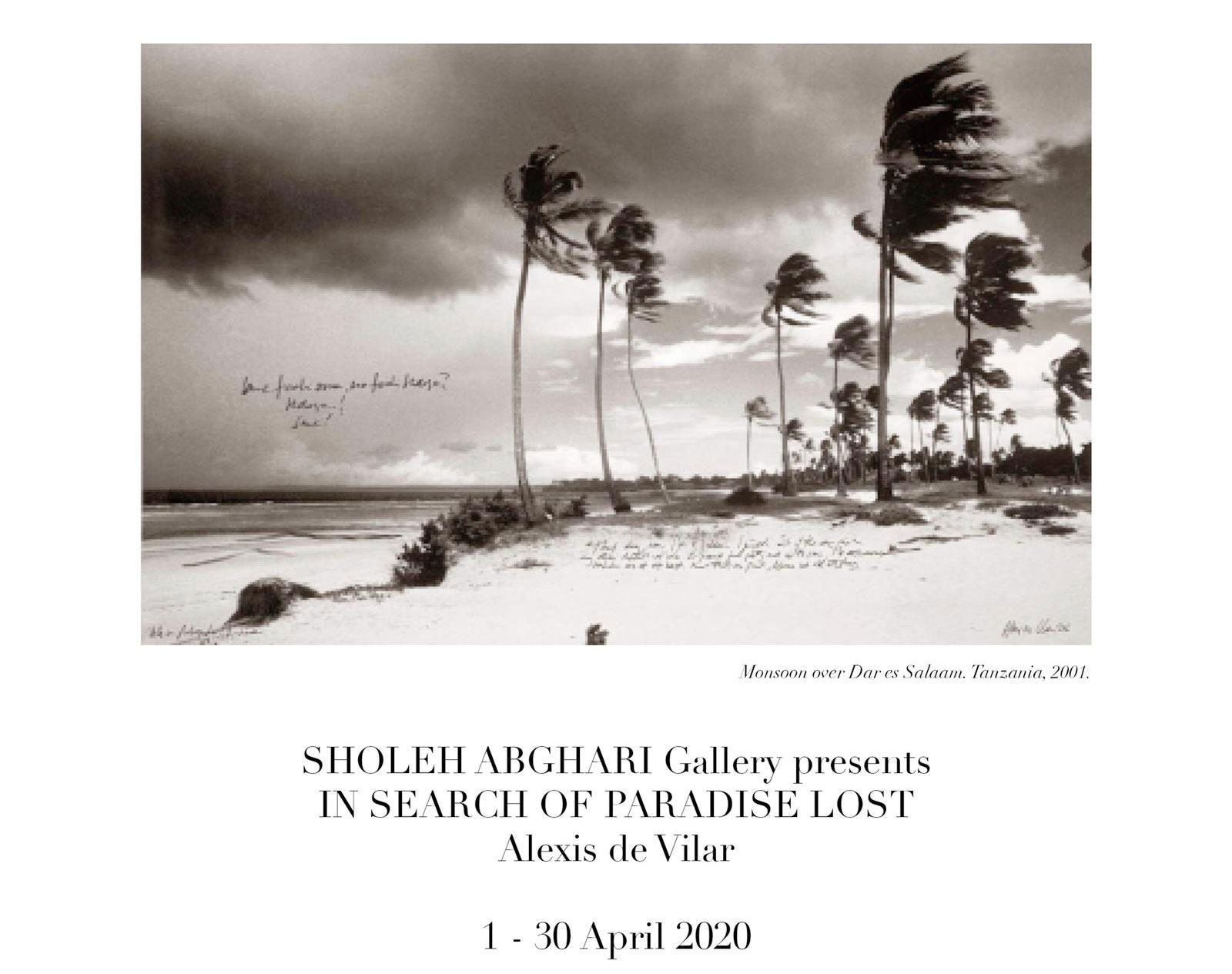 art gallery marbella sholeh abghari in search of paradise lost alexis de vilar
