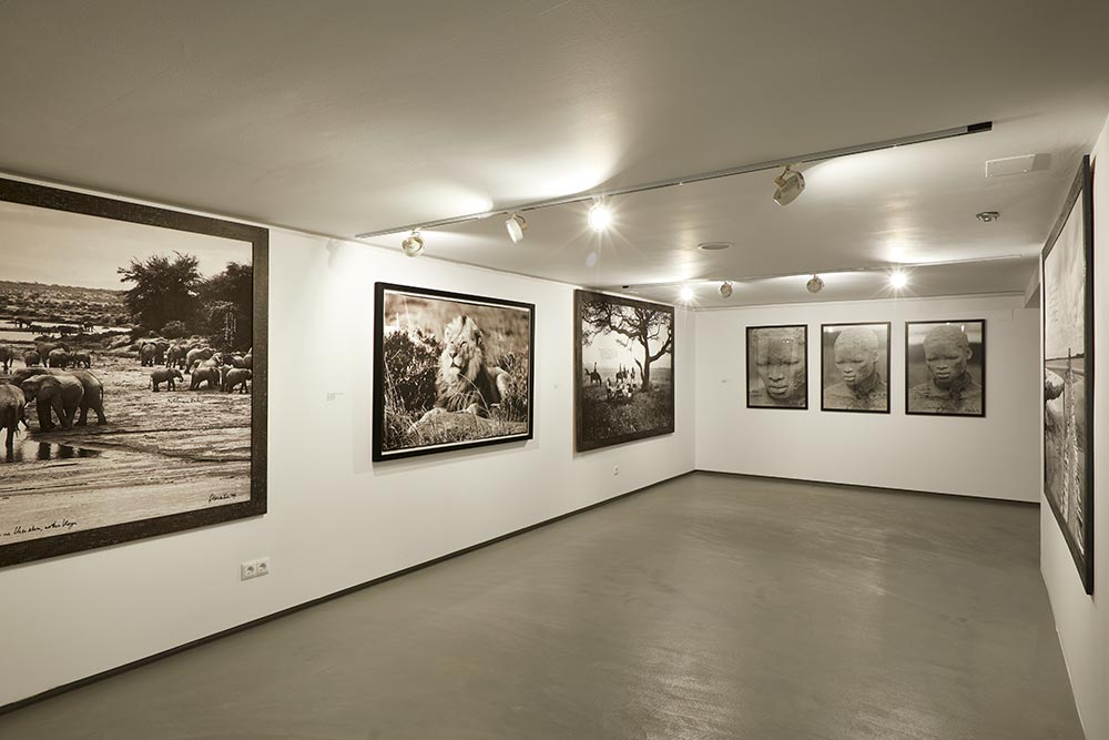 sholeh-abghari-art-gallery-marbella-gallery-weekend