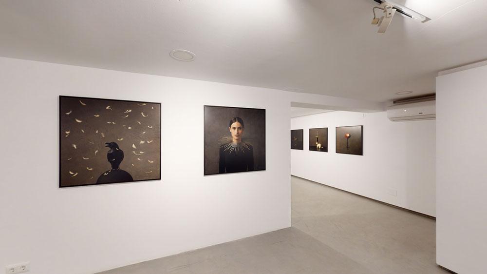 Sholeh-abghari art gallery marbella spain contemporary art marbella marie cecile thijs