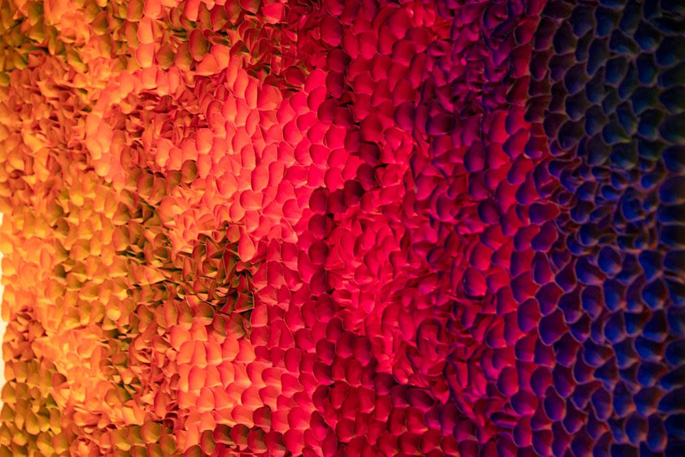 zhuang hong yi flowerbeds ehibition sholeh abghari art gallery marbella